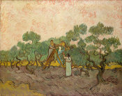 Vincent van Gogh - Women Picking Olives