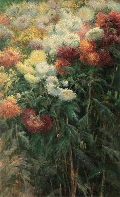 Gustave Caillebotte - Chrysanthemums in the Garden at Petit-Gennevilliers
